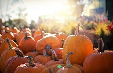 Imegn representativa de las fiestas de Halloween para el post de tradicioes canarias en el día de todos los santos, The Corner Adeje