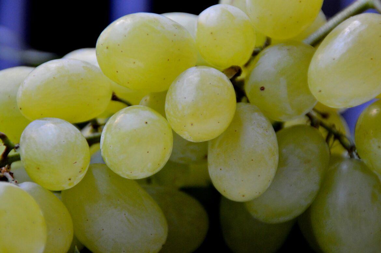 celebra el año nuevo con la tradición de las 12 uvas, en The Corner Adeje te hablamos de ella. Happy new year!