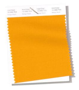 el naranja-amarillo más vibrante del fASHION COLOR REPORT PARA EL 2019